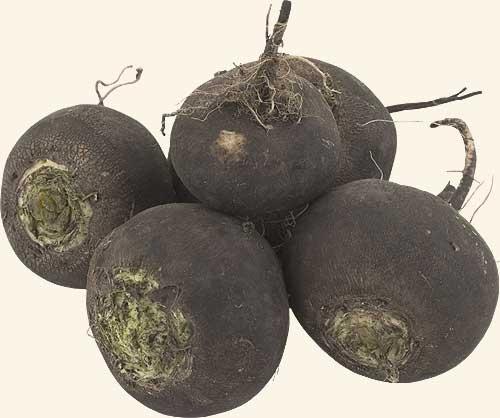 Салат з чорною редькою