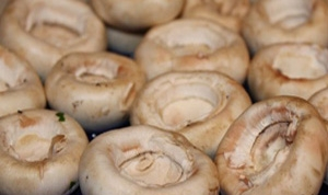 гриби на дошці